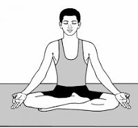 Yoga e pranayama per i coaches area pro 2020