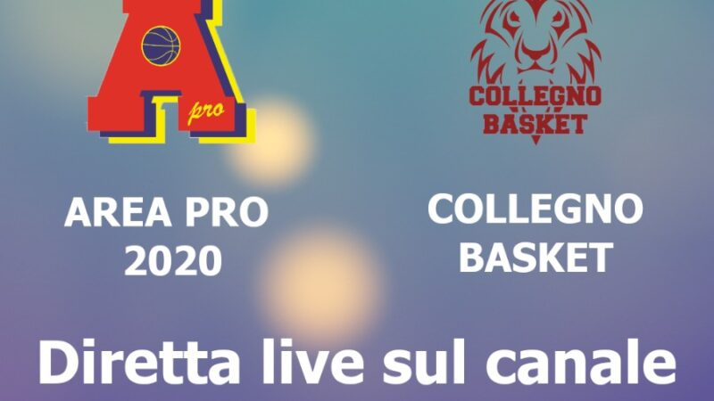 Under 18 gold: Area Pro 2020 vs Collegno. Diretta web.tv su churchtonimanero. Guarda in seguito la registrazione.
